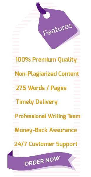 Our Essay Writing Service Features